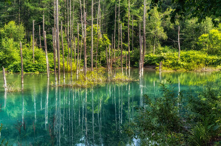 biei: Blue Pond taken during summer  Biei, Japan  Stock Photo