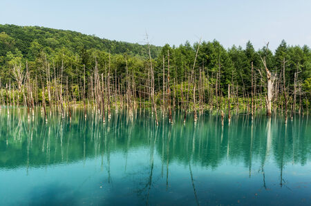 biei: Blue Pond taken during summer  Biei, Japan  Stock Photo