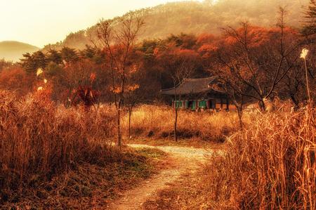 temple scene in the autumn  Taken in Buan, South Korea