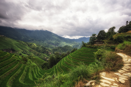 rice terrace: The longji rice terrace viewed from the viewpoint number 2 thousand layers to the heaven. Longsheng, China Stock Photo