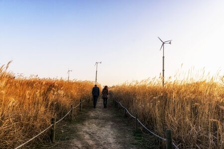 a couple strolling through wild reeds and wind turbines on top of haneul park in seoul, south korea taken during winter sunset hours. Haneul park is located in mapo district near the  stadium.