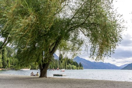 lakeside: lake wakatipu view of willow tree from queenstown lakeside beach area. Queenstown is a small town in new zealand. Taken during summer Editorial