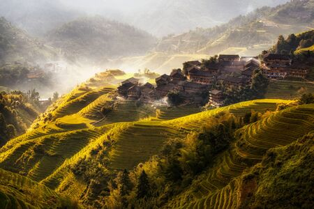 china people: Terraced rice field in longji in china. This viewpoint is overlooking the dazhai village. Edited the colors to give it more harvest feel to the image.