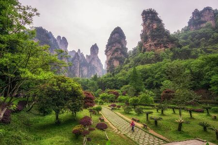 grotesque: yuanjiajie national park scenic views. famous tall grotesque rocks that became an inspiration for avatar. Zhangjiajie, China