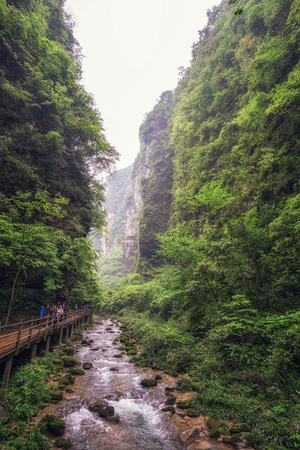hunan: creek at the bottom of zhangjiajie grand canyon. lush forest and woods surrounding the creek water. Stock Photo