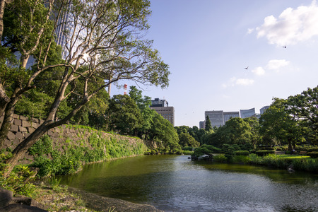 lake district: summer scenery along a small lake in hibiya park in tokyo, japan