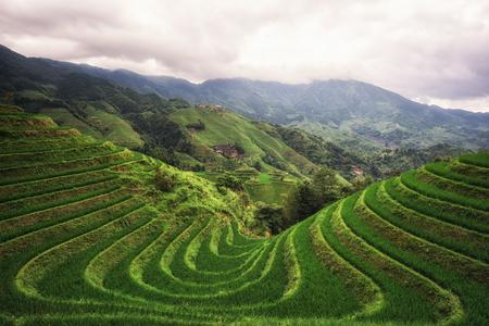 天に視点数 2 千層から見た龍脊棚田。龍勝、中国