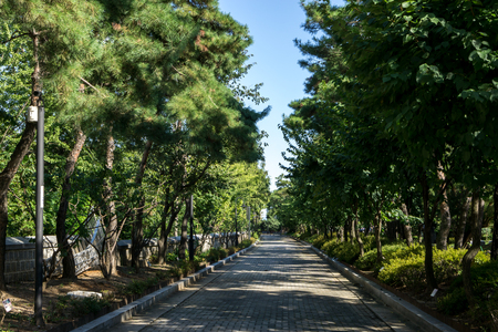 yanghwajin foreign missionary cemetery scenery in hapjeong, seoul, south korea Stock Photo