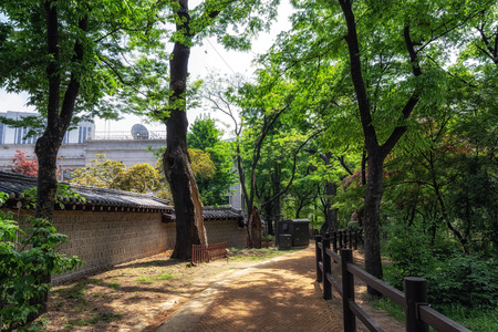 doldam road pathway surrounding deoksugung palace in seoul, south korea. Editorial