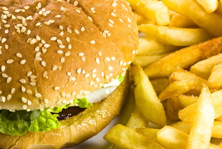burger with french fries photo