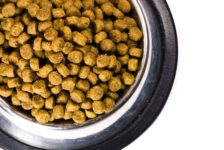 dog food on metal plate photo