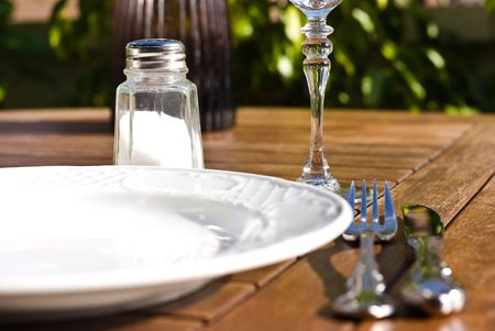 saltshaker, fork, knife and plate on sunny day Stock Photo - 5152040