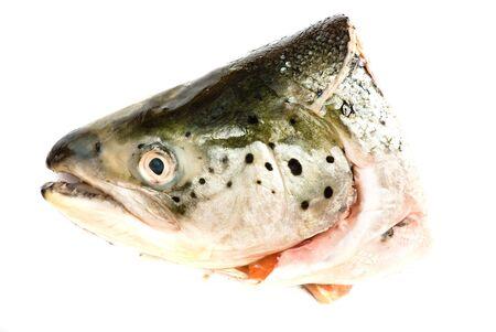 fish head isolated Stock Photo - 5228708