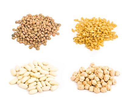 lentils: recogida de las legumbres Foto de archivo