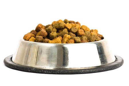 dog food: food dog Stock Photo