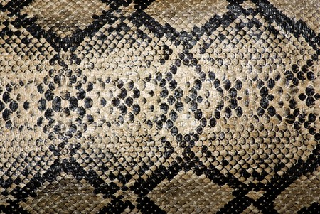 high scale: snake texture