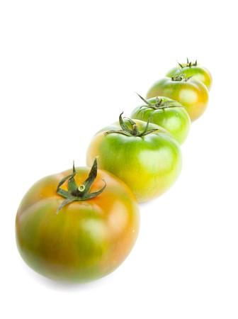 tomatoes Stock Photo - 7981933