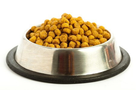 dog food Stock Photo - 7982386