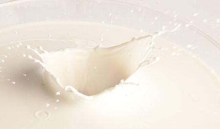 milk splashing on a glass on white background Stock Photo - 7982553