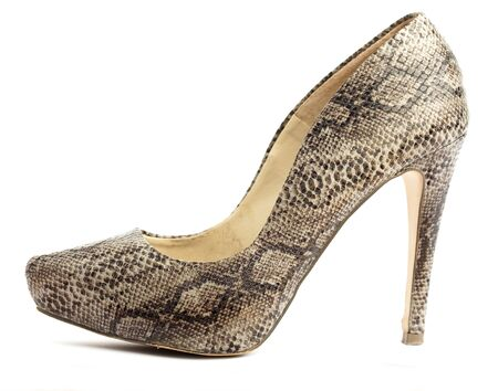 high heeled shoe: high heeled shoe