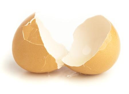 gallina con huevos: huevo de accidente aislado en un fondo blanco