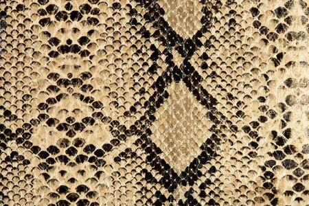 piel morena: textura de serpiente