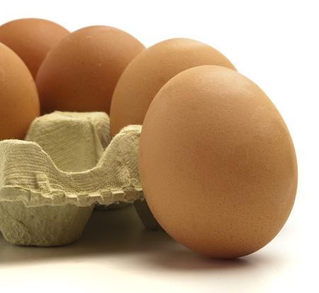 extreme closeup of a egg box detail  photo