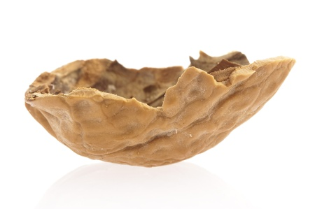 walnut shell isolated on a white background photo