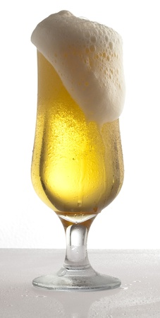 beer on glass on a white background photo