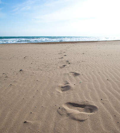 sandy beach: footprints on the sand, extreme closeup photo