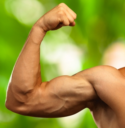 male arm: b�ceps fuerte sobre un fondo la naturaleza