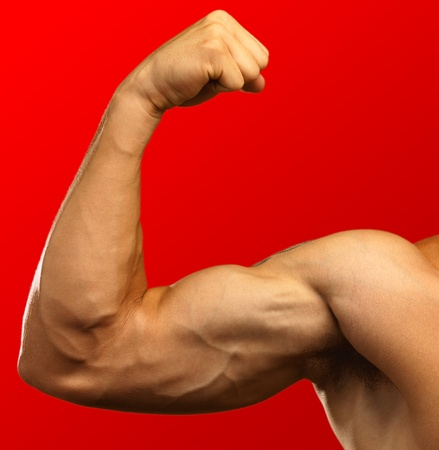 strong biceps on a red background photo
