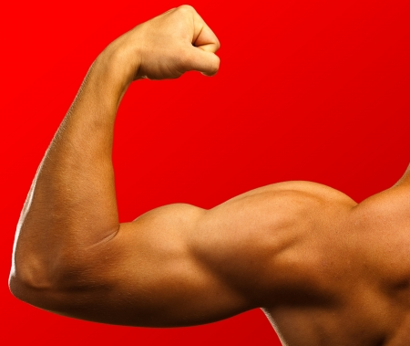 arm muscles: strong biceps on a red background
