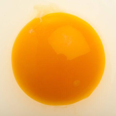 yolk: raw egg yolk texture, extreme closeup photo Stock Photo