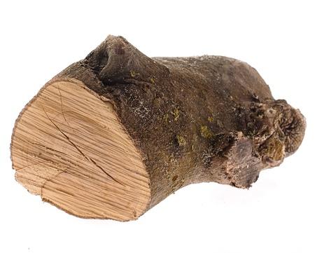 log isolated on a white background photo