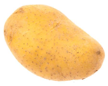 potato isolated on a white background photo