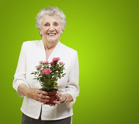 senior woman holding a flower pot against a green background photo