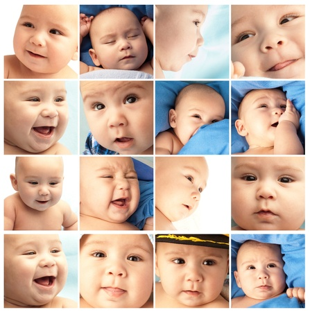 group of different baby pictures photo