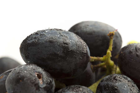 extreme closeup of a black grapes on white photo