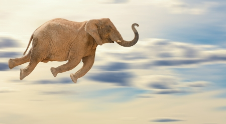 Flying Elephant, Outdoor Stock Photo