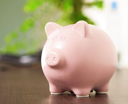 Pink Piggy Bank, Indoor photo