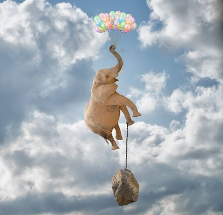 Elephant Flying With Balloons and with a stone tied to his leg photo