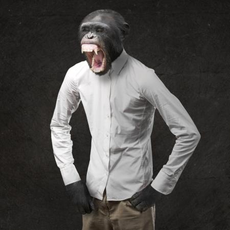 Annoyed Monkey Shouting On Black Background photo