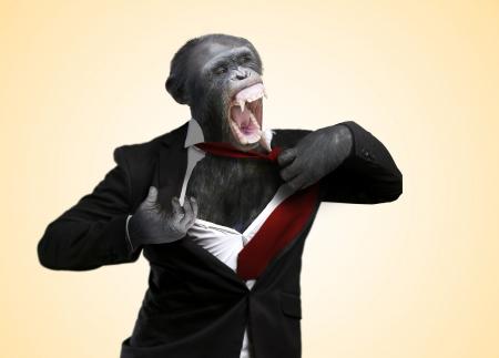 Annoyed Monkey Shouting On Yellow Background Archivio Fotografico