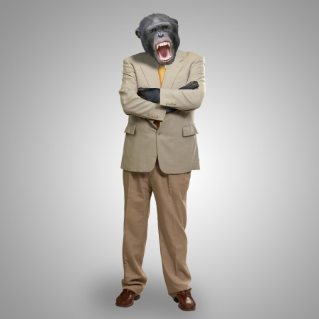 Angry Gorilla In Suit On Grey Background