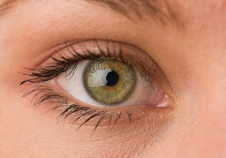 extreme macro: Close-up Of Human Eye
