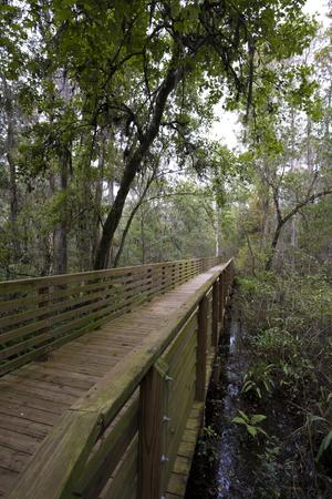 boardwalk trail: Nature Trail Boardwalk