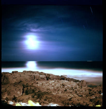 Ocean Moonlight photo