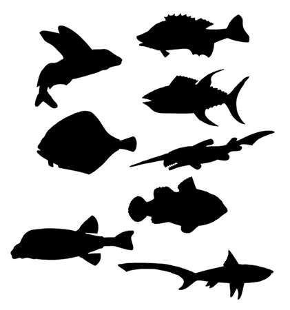 Collection of vector black silhouettes of various sea fishes Vector