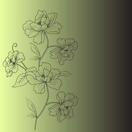 hand drawn background with a fantasy flower Vector